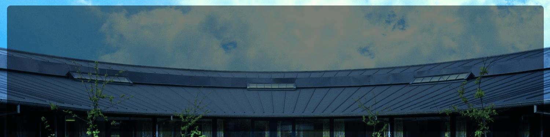 Dachy estetyczne